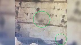 Per plauką nuo nelaimės: iš Raudų sienos iškritęs 100 kg blokas vos nekliudė maldininkės