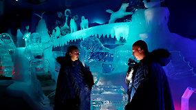 Nuo karščio bangos berlyniečiai slepiasi ledo bare