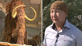 Vienintelė pasaulyje mamuto vilnos kepurė parduodama už 10 tūkst. dol.