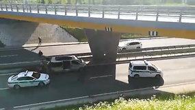 Sužeistas briedis sukėlė chaosą Vilniaus kelyje