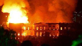 Ugnis pasiglemžė tūkstančius metų istorijos: gaisras smogė 200 m. Brazilijos Nacionaliniam muziejui