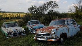 Daugiau nei 300 surūdijusių sovietinių automobilių savininkas dėl jų yra pasiryžęs badauti
