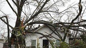 Katastrofinis Michael pasiekė Floridą: galingiausio per amžių  uragano vėjo greitis siekia 250 km/val.