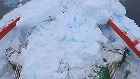 Galingo ledkalnio neįveikė net ledlaužis: susidūrimas su ledo masyvu sutrikdė ekspediciją