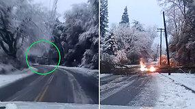 Porai pavyko išvengti pavojingos akimirkos –  ant kelio nukritęs medis nuvertė elektros stulpą