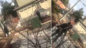 """Savo namo kieme šiukšles rinkusį juodaodį apsupo pareigūnai – grasino šauti, jei nepadės """"ginklo"""""""