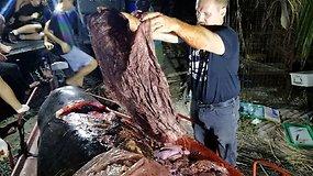 Banginio pilve rasti 40 kg plastiko sukėlė aktyvistų įtūžį – tokio kiekio nesitikėjo net jie