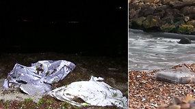 Į Juodosios jūros pakrantę bangos išmetė įtartinas pakuotes – rasta daugiau nei 150 kg kokaino