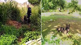Pas Lentvario gyventoją – turininga policijos krata
