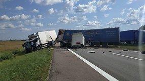 Šiurpi sunkvežimių avarija Panevėžio plente: vienas vairuotojas be sąmonės, sutriko eismas