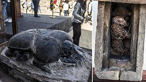 Unikalus archeologų radinys: mumifikuotoje gyvūnų kolekcijoje  – didžiausias pasaulyje skarabėjus