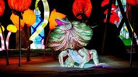 """Pasigrožėkite: Pakruojo dvare – šviesos skulptūrų parkas """"Stebuklų šalyje"""""""