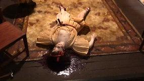 Maketai iš miniatiūrų su neišaiškintų nusikaltimų scenomis naudojami net teismo medicinos studentų