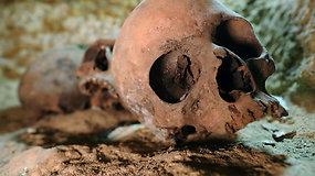 Žinutė iš pomirtinio pasaulio: Egipte archeologai rado 2 tūkst. metų senumo nekropolį