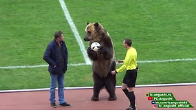 Rusijoje prieš futbolo rungtines sirgalius linksminęs lokys sukėlė pasipiktinimo bangą