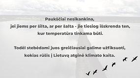 """""""Klimatosūkis"""": kokius paukščius į Lietuvą atginė klimato kaita?"""