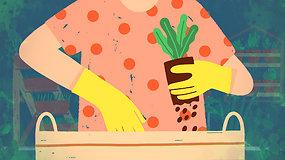 """""""Sodas balkone"""": viskas, ką reikia žinoti renkantis tinkamą vazoną ir žemės mišinį"""