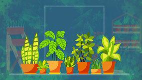 """""""Sodas balkone"""": nebijokime eksperimentuoti – svogūnų ir gėlių miksas vazone"""