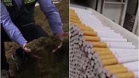 Ispanijoje aptikta nelegali tabako gamykla: vienas iš gaujos vadeivų – ieškomas lietuvis
