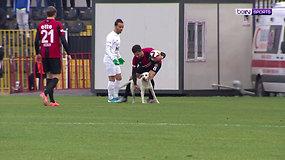 Šuniukas tapo tikra sensacija: žaismingai nusiteikęs kamuolių mėgėjas įsiveržė tiesiai į futbolo aikštę