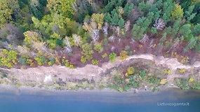 Gastilionių atodangos apylinkės: juodžiausias ežeras, storiausia pušis ir ledynmetį menantys klodai