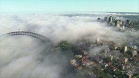 Stulbinantis grožis: Sidnėjų apgaubė įspūdingas rūkas