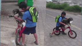Internautų širdis pavergė jautrus berniuko poelgis: pirmiausia pasirūpino šuniuku, o tik tada savo saugumu