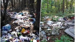 Nelegalūs verslininkai pelnosi miškus versdami sąvartynais – juose nugula ir sveikatai pavojingos medžiagos