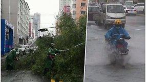 """Taifūnas """"Maysak"""" siaubia Kiniją – Rusijoje ši gamtos stichija nusinešė 3 gyvybes"""