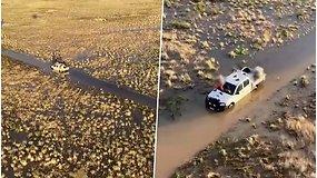Tokio nuotykio nelinkėtų niekam: atokioje vietovėje įklimpus automobiliui, teko eiti 12 val., kad išsikviestų pagalbą