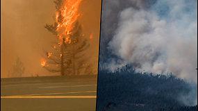 Pražūtingi gaisrai Kanadoje – užregistruotas visų laikų karščio rekordas