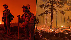 Gaisras sparčiai naikina JAV miškus – iki šiol liepsnų nė kiek nepavyko suvaldyti