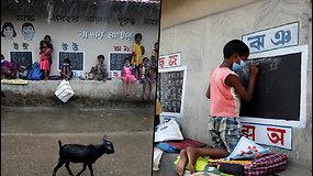 Indijos mokytojas gatves pavertė mokykla – vaikai mėnesiais neatsiversdavo knygų