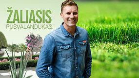 Žaliasis pusvalandukas su Tautvydu Gursku: vejos paruošimas