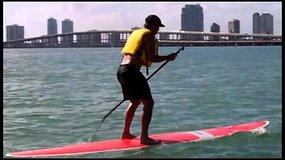 Fernando Verdasco Majamyje ir apie Majamį