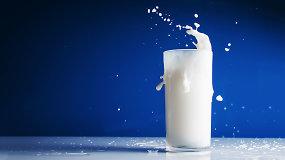 10 faktų apie pieną