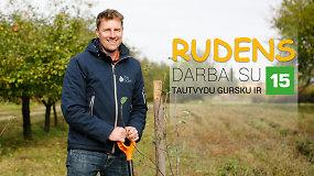 Rudens darbai su 15min ir Tautvydu Gursku: kaip sodinti medelį