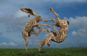 Gyvos skulptūros, kurių pamatyti traukia minios