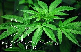 Seimas planuoja svarstyti siūlymą dekriminalizuoti nedidelį kiekį narkotikų