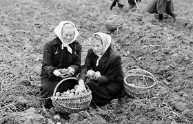Antano Zenkevičiaus nuotraukos iš Alytaus kraštotyros muziejaus fondų