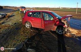 """Krakių kaime neatidi vairuotoja prisivažinėjo: """"Toyota"""" – griovyje, """"Renault"""" – sudaužytas"""
