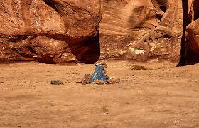 Dykumoje paslaptingai atsiradęs monolitas paslaptingai ir pradingo