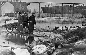 Vokietija skyrė 12 mln. eurų Leningrado blokadą išgyvenusiems žmonėms