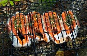 Piknikas įmanomas ir be šašlykų: eksperto patarimai ir receptai ant grilio kepantiems žuvį