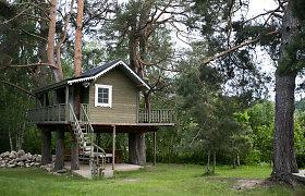 Statė vaikams, o tapo turistine bomba – namelis medyje šią vasarą tuščias buvo tik dieną
