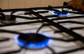 Tyrimas: ES perteklinė dujų importo infrastruktūra kelia grėsmę klimato tikslams