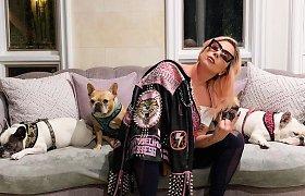 Vilties dar yra: už pagrobtų šunų sugrąžinimą Lady Gaga siūlo įspūdingą atlygį