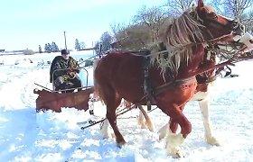 Kėdainių rajone sniegas valomas ir arklių traukiamu padargu