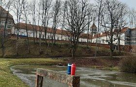 Pasipiktino ketinimais kirsti medžius prie Panemunės pilies: seksime Gedimino kalno pavyzdžiu?