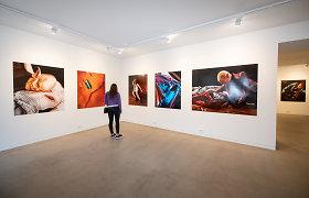 Vilniuje – meno galerijų savaitgalis